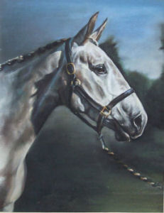 Rhosyn, Pastel Commission. See'Gallery' below.