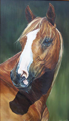 'Levi' Oil on Board. See COMMISSIONS page
